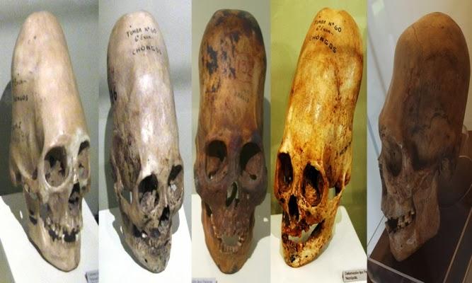 Paracus skulls DNA