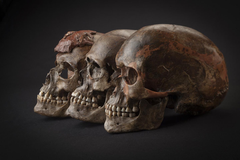 3-Skulls