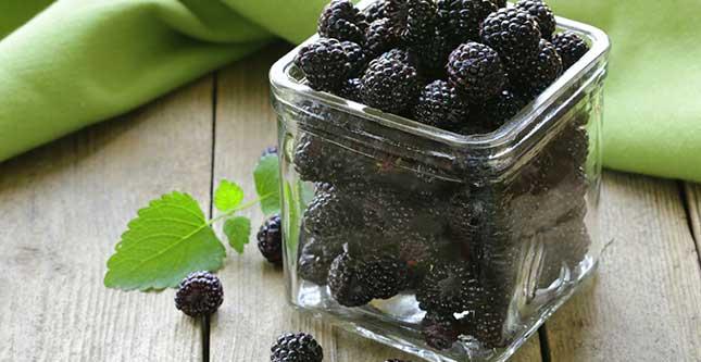 Frambozen, één van de rijkste bronnen van antioxidanten in voedingsmiddelen