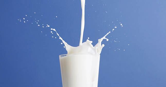 Volle melk verlaagt de cholesterol