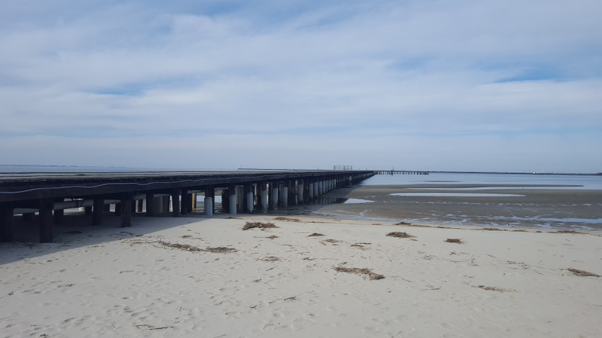 Cape henlopen fishing pier update delaware surf for Surf city pier fishing report