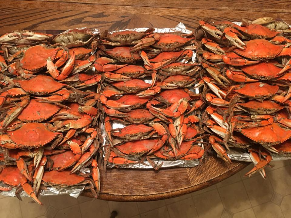 steamed hard crabs, delaware, sussex county,