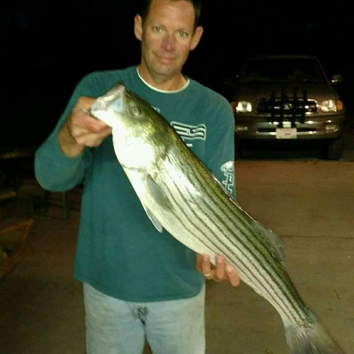 stripedbass, resident keeper, keepah, bunkah, delaware, sussex county, inlandbays, rehoboth bay, indian river bay, assawoman bay, rockfish, linesider, plugging forbass