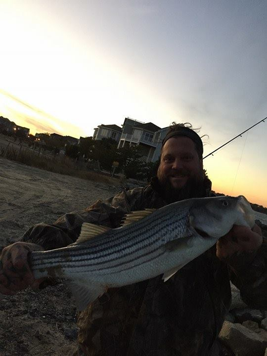 striped bas, rockfish, linesider, boots, delaware, sussex county