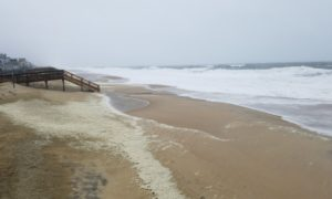 Lost in long neck and sandbars to shoals delaware surf for Oak orchard fishing report 2017