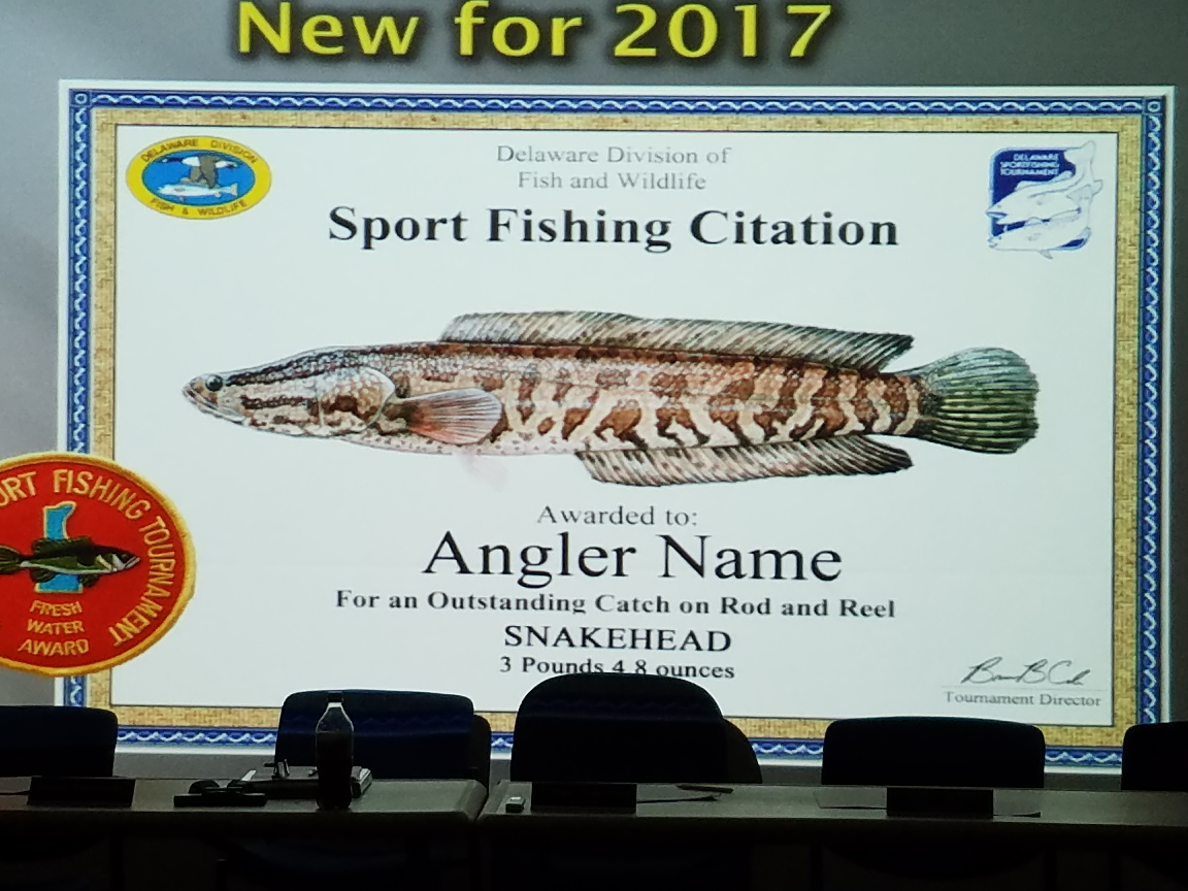 snakehead, citation, delaware, dnrec, fish and wildlife, delaware sport fishing tournament, northern snake head