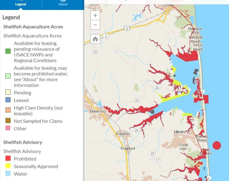 aquaculture map, inland bays, indiann river bay, rehoboth bay, assawoman bay, oysters, clams