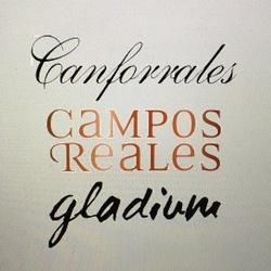 Michael Campos Reales