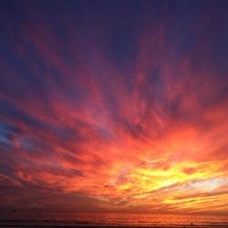 Paul T- Huntington Beach