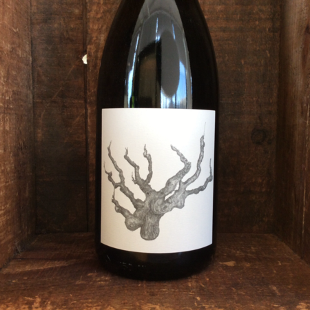 Broc Cellars Alexander Valley Carignan 2013