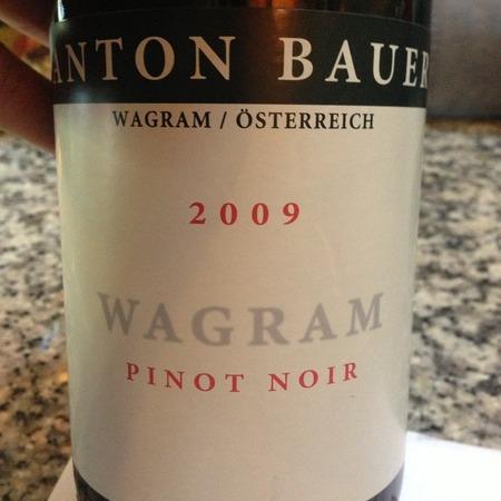 Anton Bauer Wagram Pinot Noir 2015