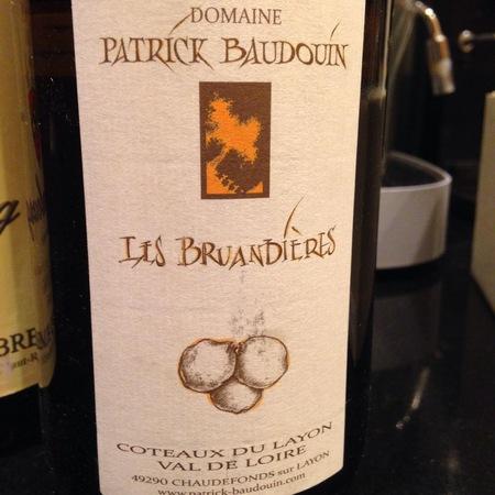 Domaine Patrick Baudouin Les Bruandières Coteaux du Layon Chenin Blanc 2010