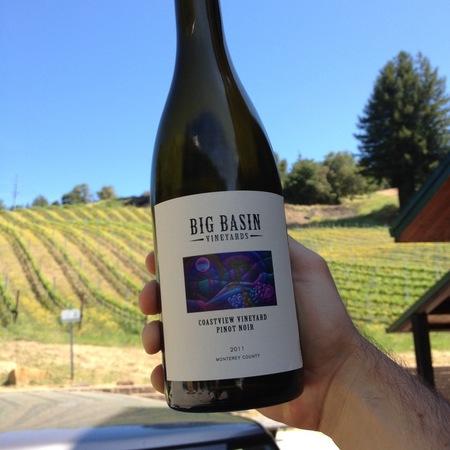 Big Basin Vineyards Coastview Vineyard Pinot Noir 2013