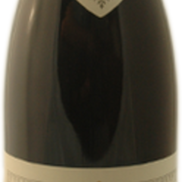 Les Damodes Nuits St. Georges 1er Cru Pinot Noir 2011