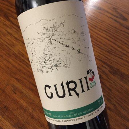 Curii Uvas y Vinos Vino Tinto 2013