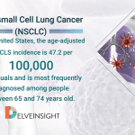 Non-small cell lung cancers Market