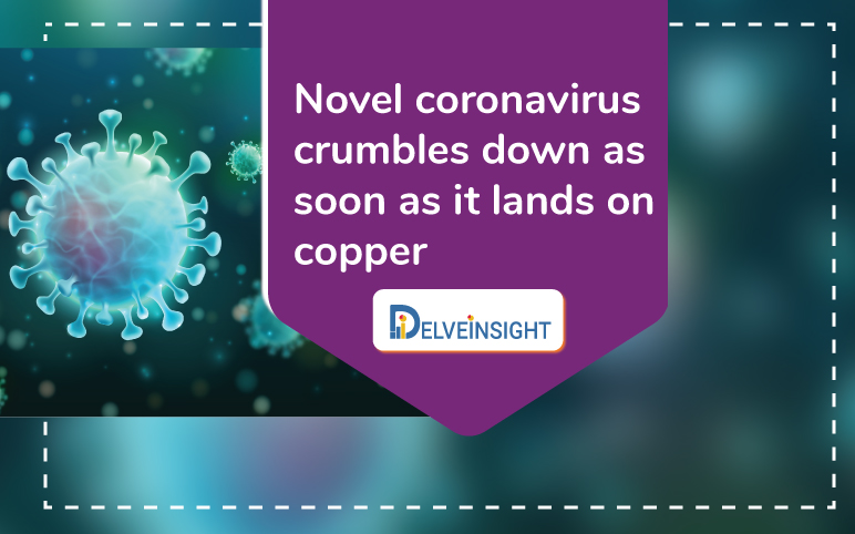 Novel coronavirus crumbles down blog