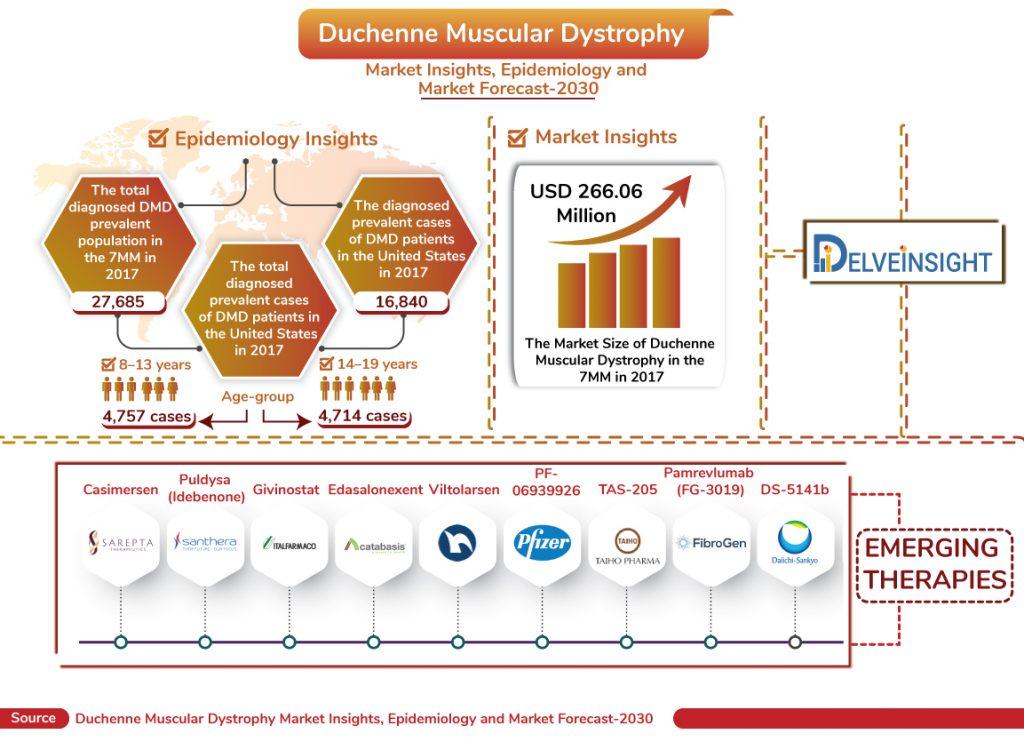 Duchenne Muscular Dystrophy Market | DMD Market