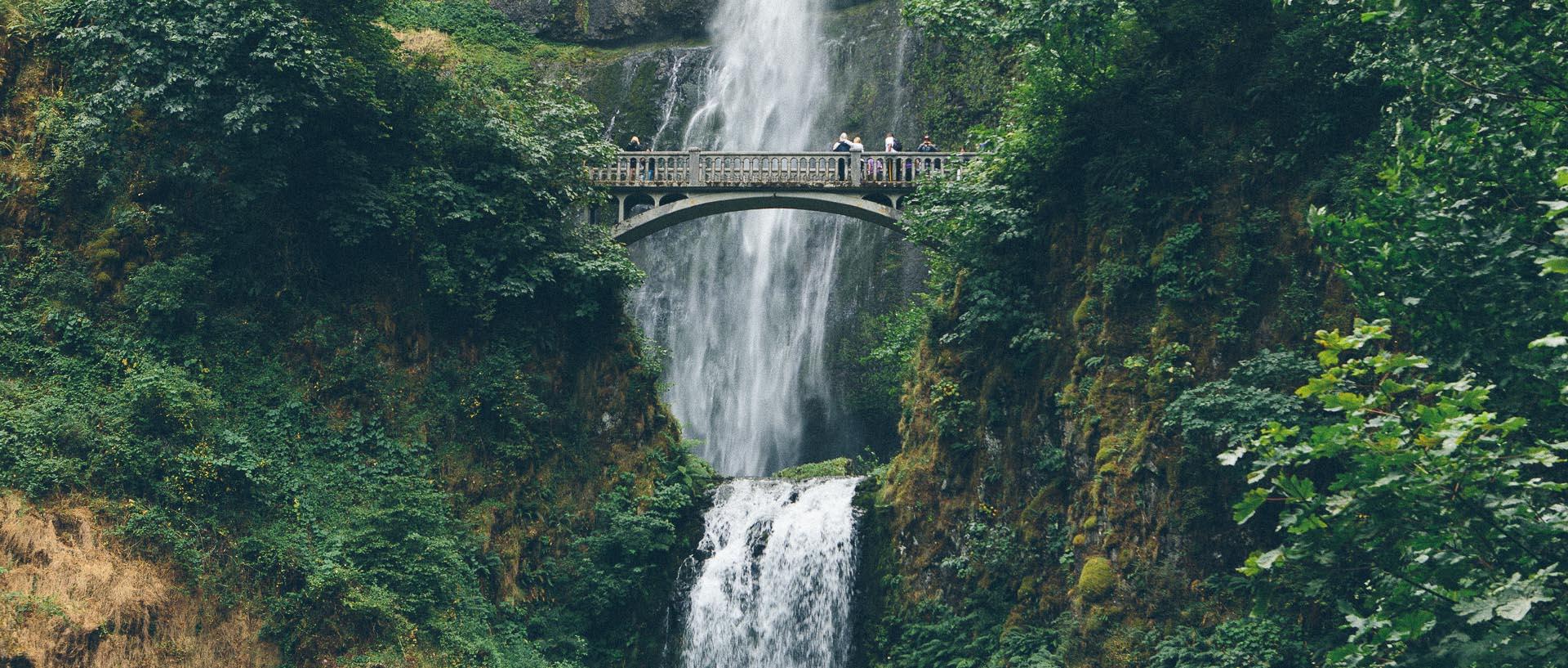 Portland Or The Democratic Travelers