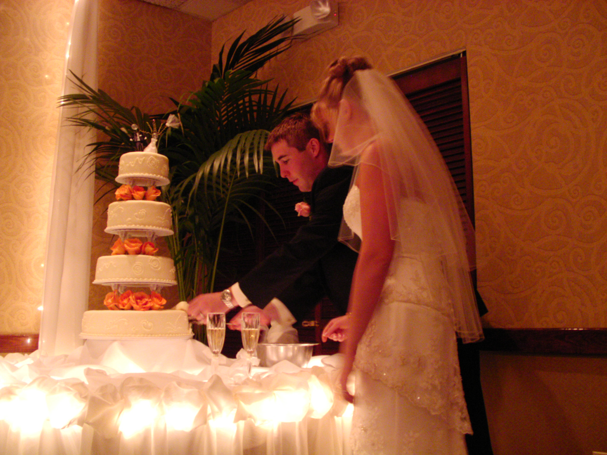 Mike and Megan Cutting the Cake