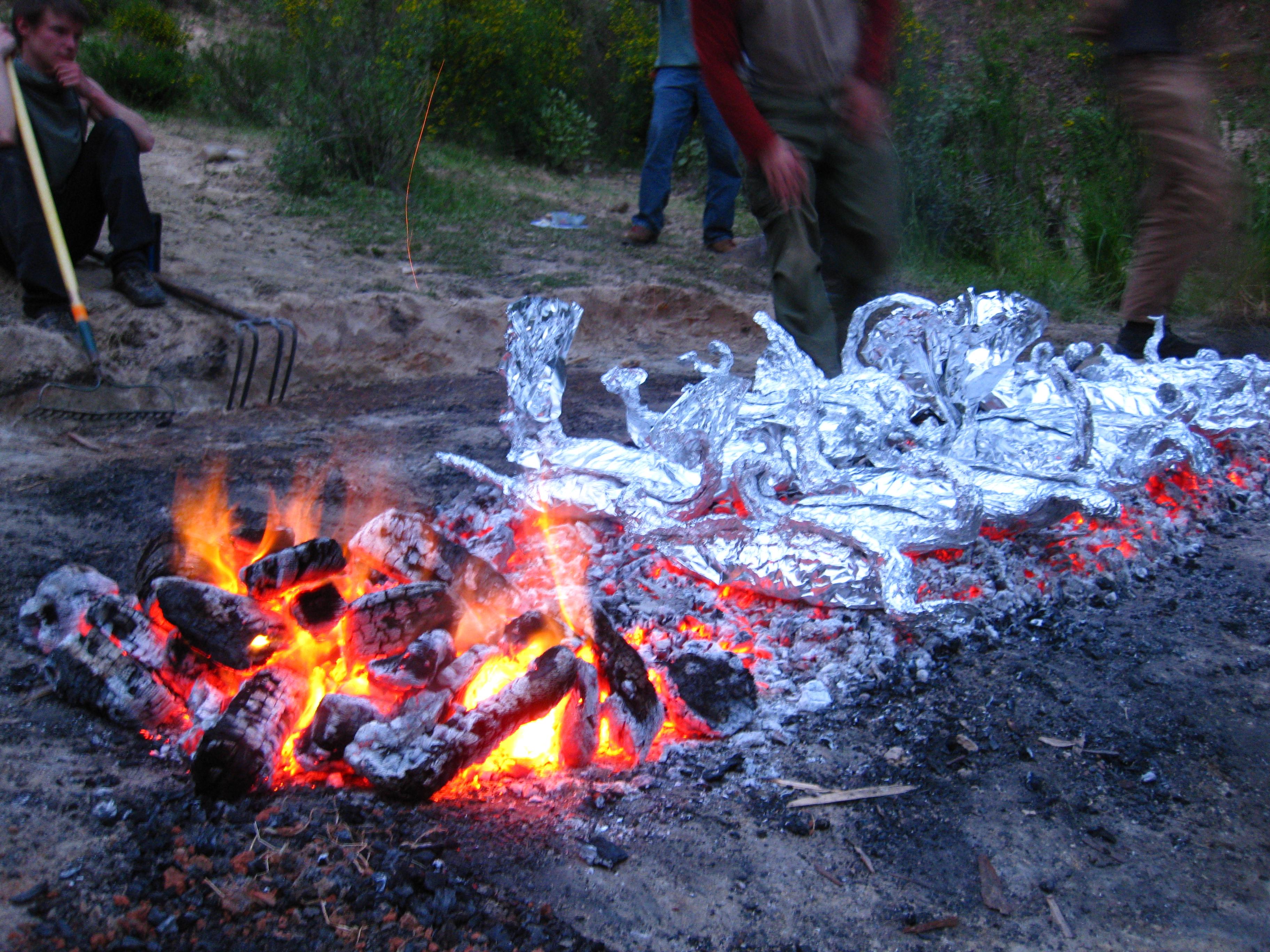 Fish in the Coals