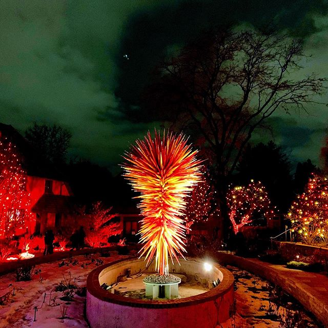 #blossomsoflight Chihuly