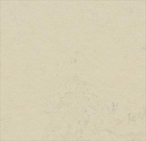 moon,Forbo Vinyl Flooring - The Design Bridge