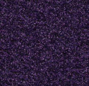 royal purple,Forbo Vinyl Flooring - The Design Bridge