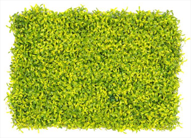 Evergreen Walls,GloPanels Fibre Cement Board - The Design Bridge