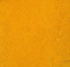golden sunset,Forbo Vinyl Flooring - The Design Bridge