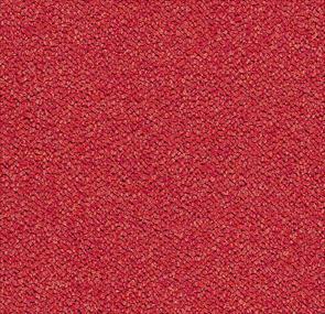 cardinal,Forbo Vinyl Flooring - The Design Bridge