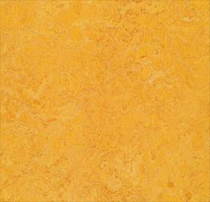 dandelion,Forbo Vinyl Flooring - The Design Bridge