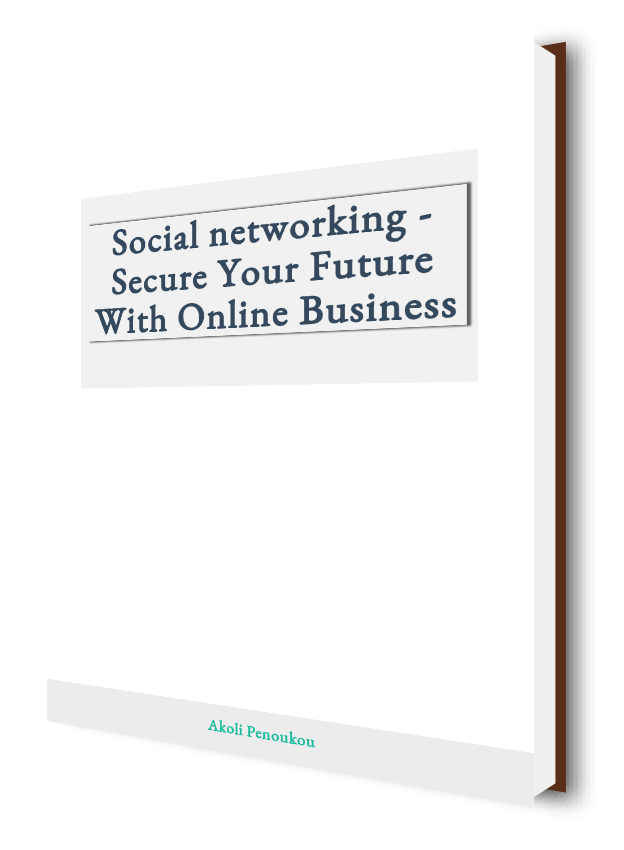 A plain eBook cover with the inscription Social networking