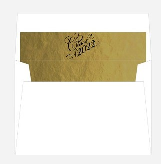 Fun Diploma Graduation Party Envelope Liner
