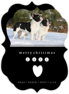 From The Dogs Christmas Photo Card