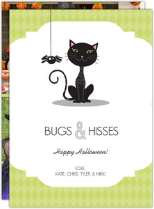 Black Cat Spider Green Halloween Card