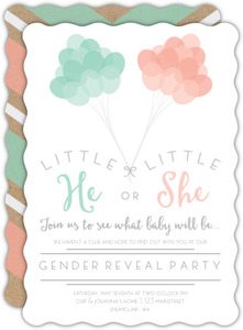 Whimsical Up in the Air Gender Reveal Party Invitation