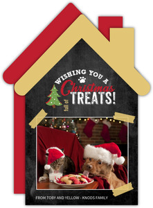Pets Treat House Photo Christmas Card