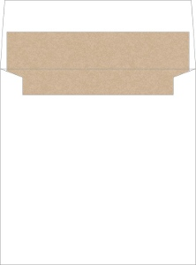 Simple Kraft Texture Envelope