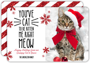 Funny Cat Christmas Photo Card