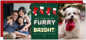 Furry and Bright Pet Christmas Photo Card