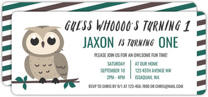Grey Owl On Branch Birthday Party Invitation