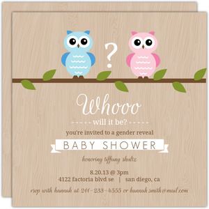 Boy or Girl Owl Baby Shower Invitation