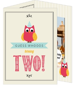 Cute Whimsical Owl 2nd Birthday Invitation