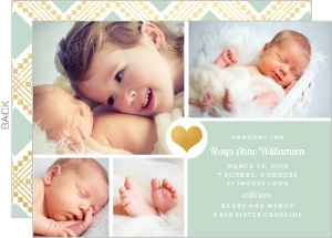Faux Gold Mint Sibling Birth Announcement