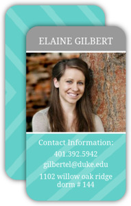 Photo Stripe Business Card