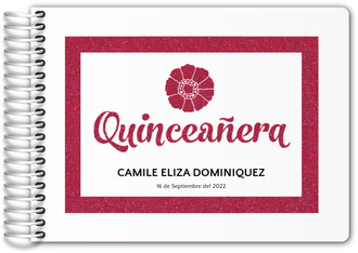Pink Glamour Quinceanera Guest Book