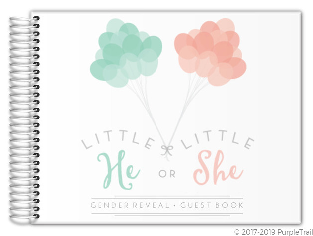Mint Peach Balloons Gender Reveal Baby Shower Guest Book