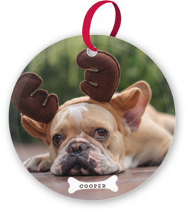 Cute Dog Bone Custom Glass Ornament