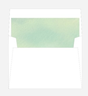 Gorgeous Greenery Envelope Liner